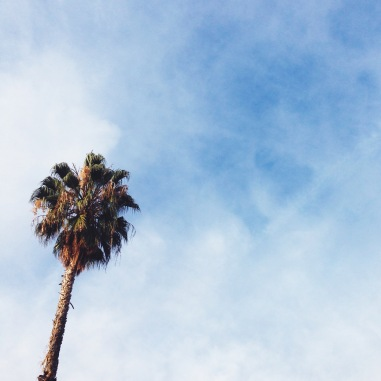 It's supposed to be December in California, right? (Side note: I'm  writing this blog post while it's pouring buckets, so yes, it is definitely December in California. Way to answer my own question.)