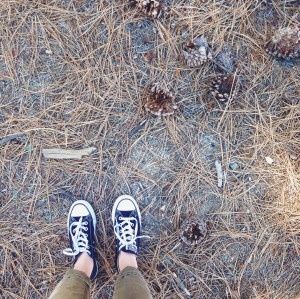 I have this thing with (forest) floors.