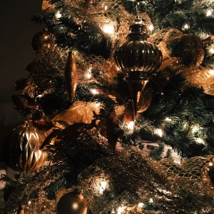 A detail shot of my family's Christmas tree.