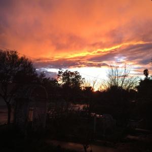 Sunsets, man.